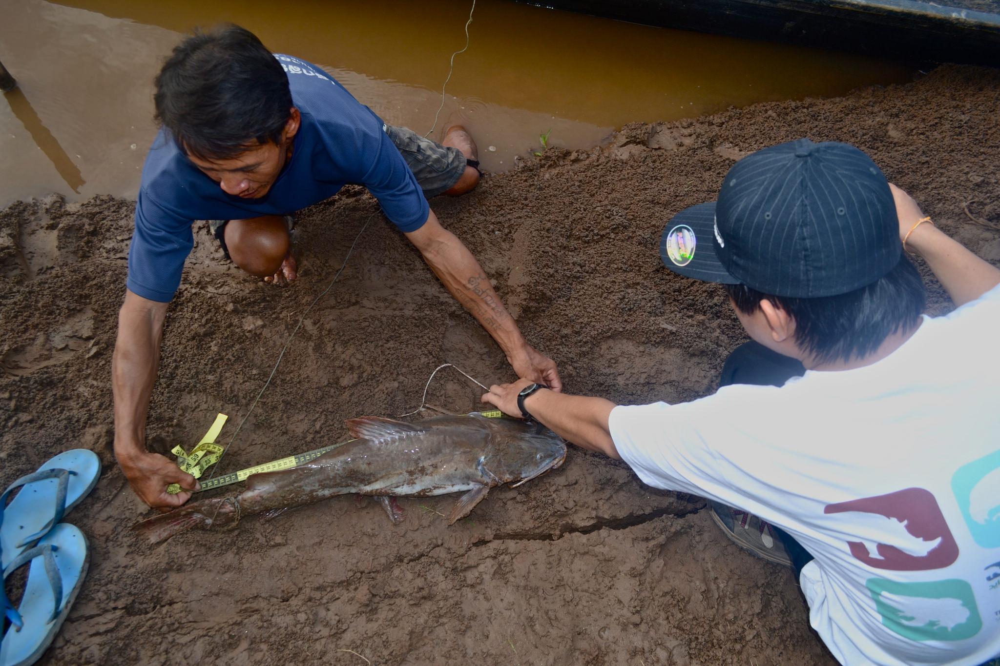 Mekong capital case study
