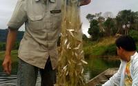 fishing-mekong