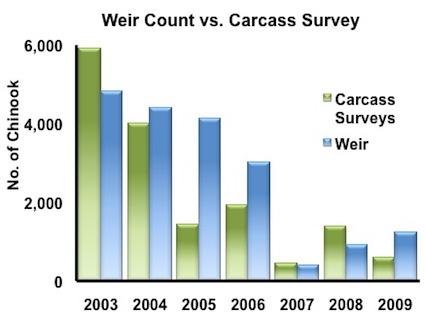 weir-vs-carcass