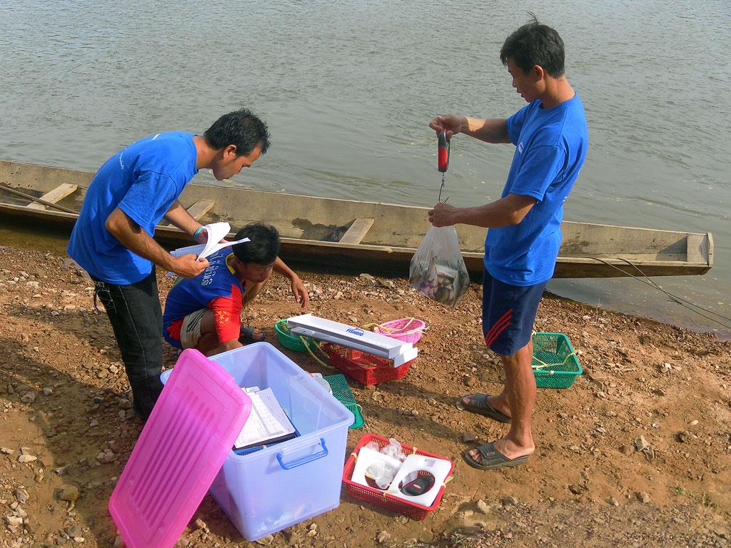laos fish sampling