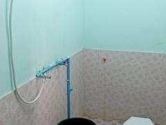 Sparse Shower