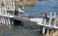 Mahogany Creek Riverwatcher