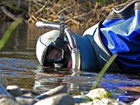 snorkel-survey