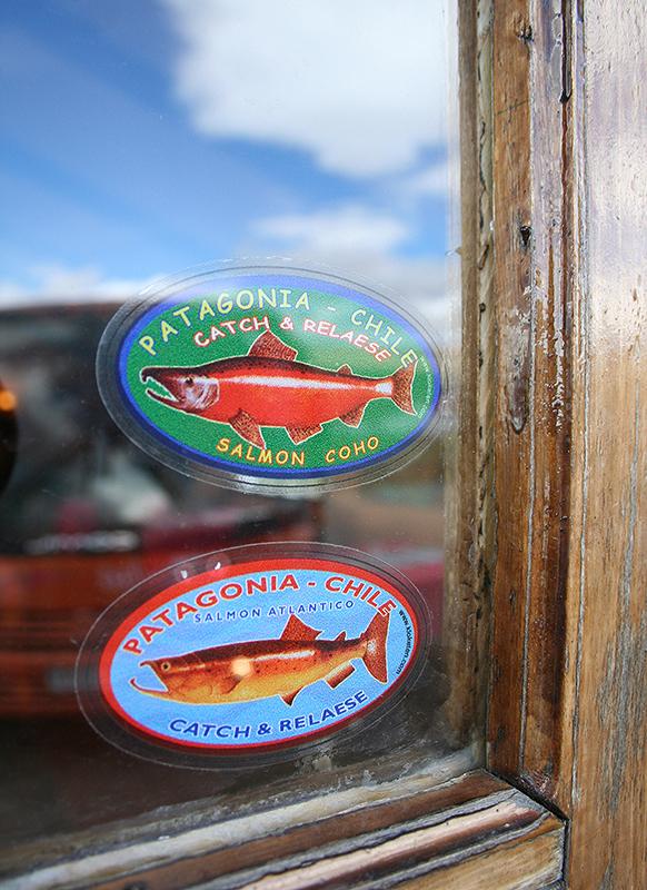 Salmon in Patagonia
