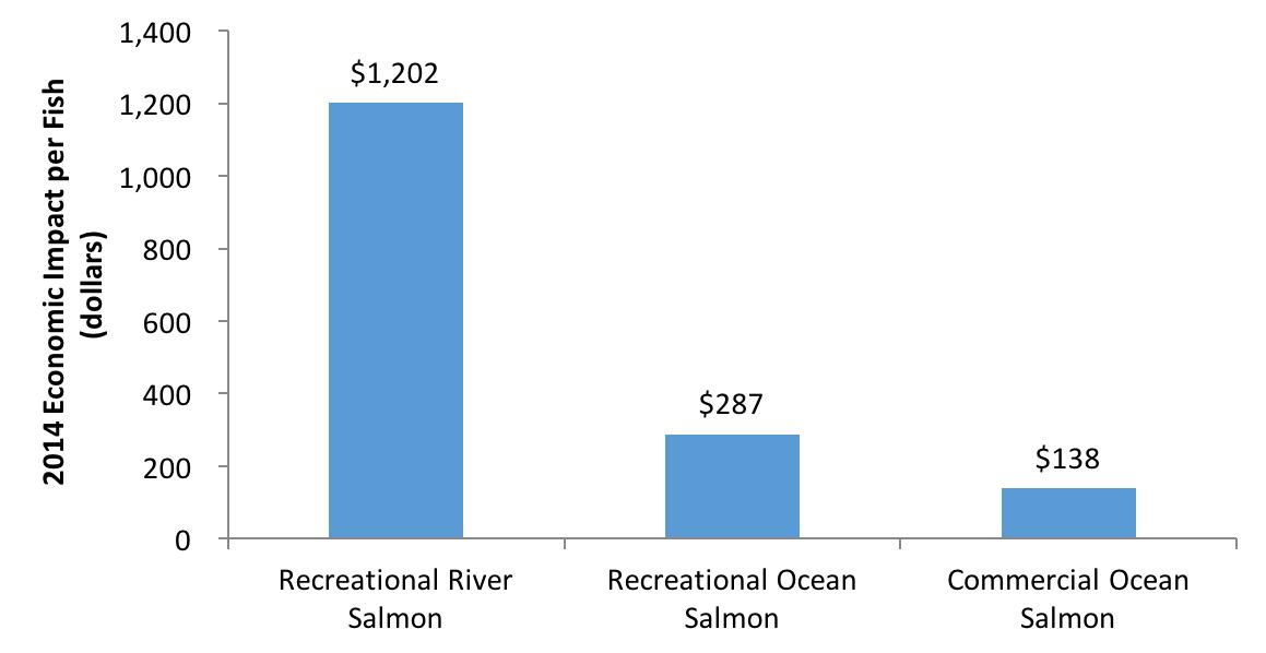 2014 Economic Impact Per Fish