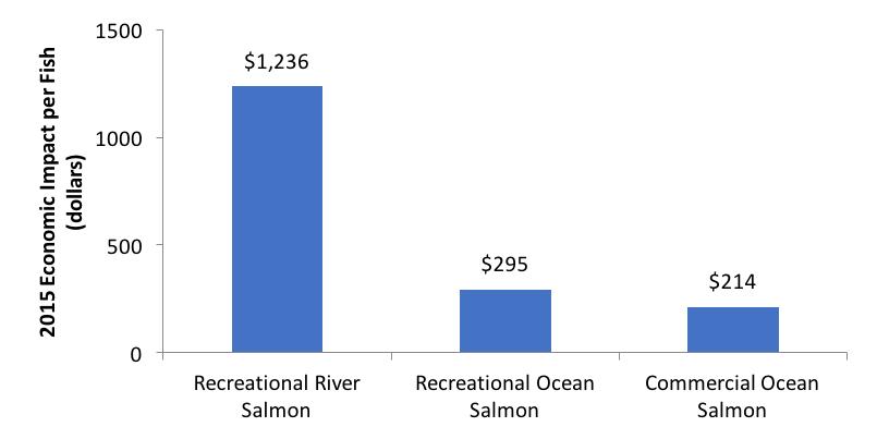 2015 Economic Impact per Fish