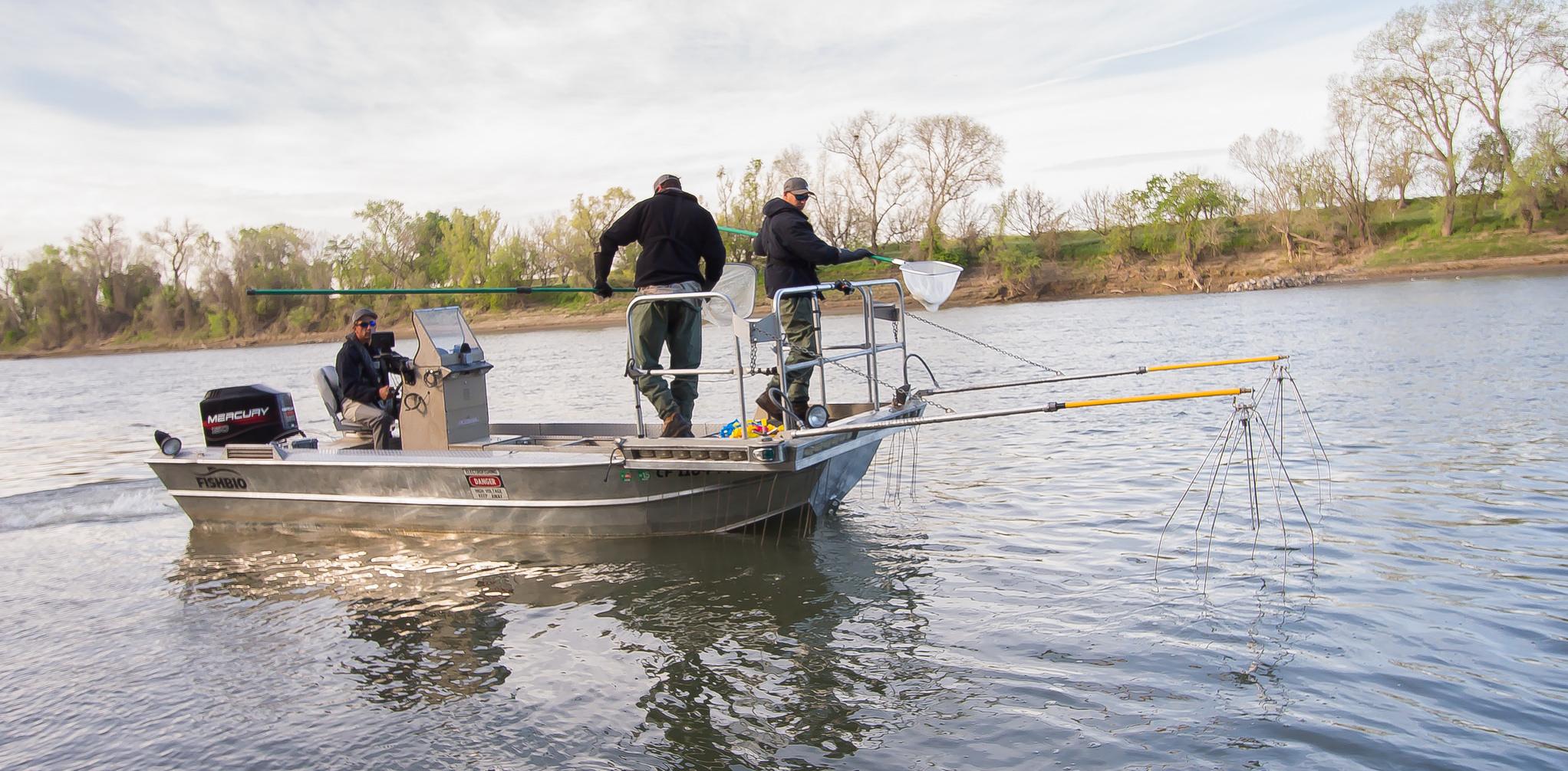Alumaweld electrofishing boat