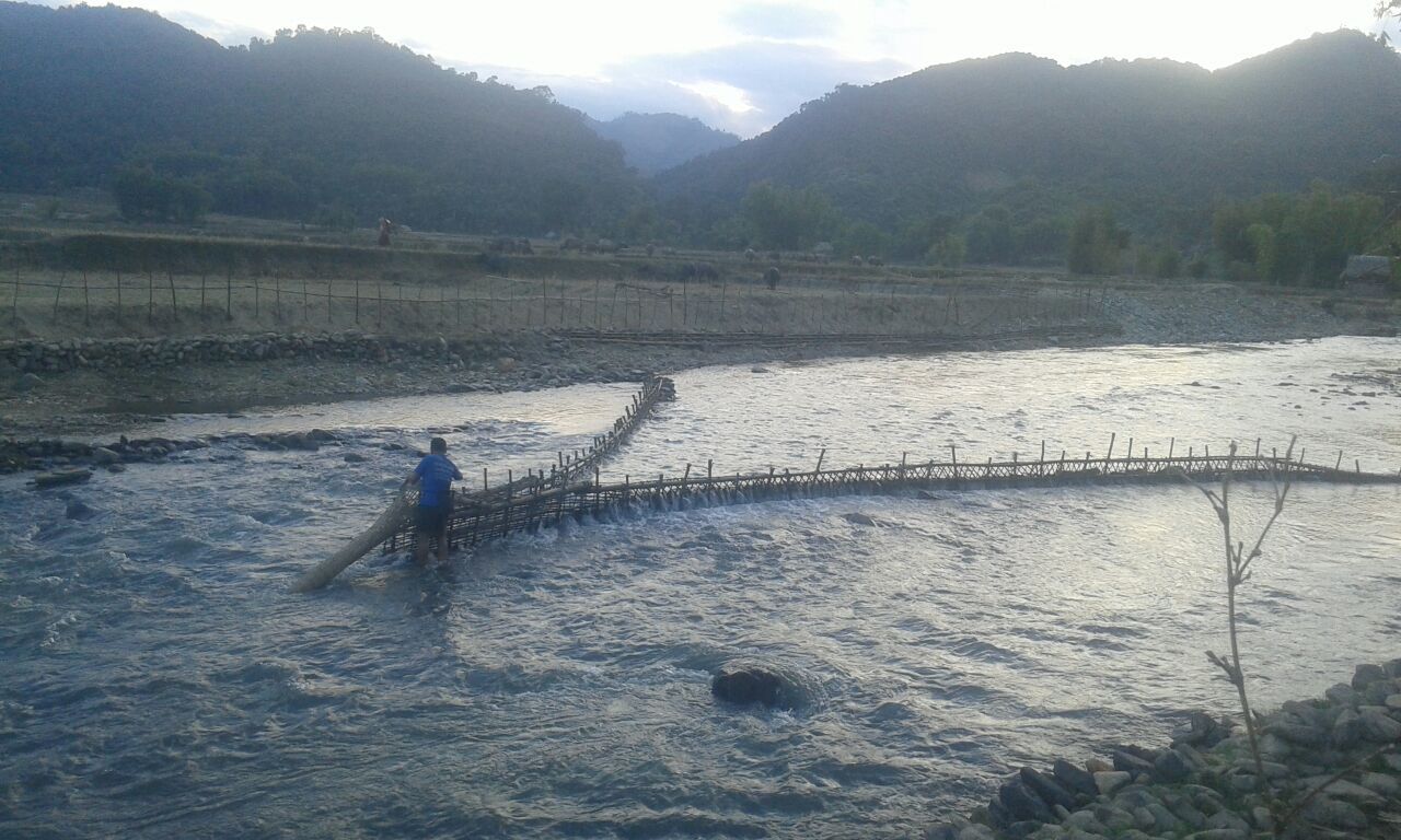 Checking fish trap