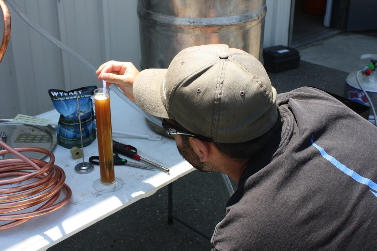 Checking the wort