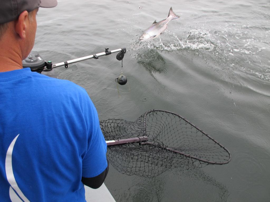 Chinook Fishing