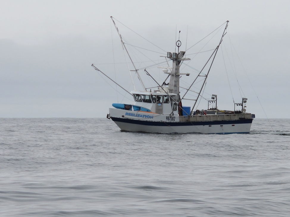 Commercial salmon fishing boat
