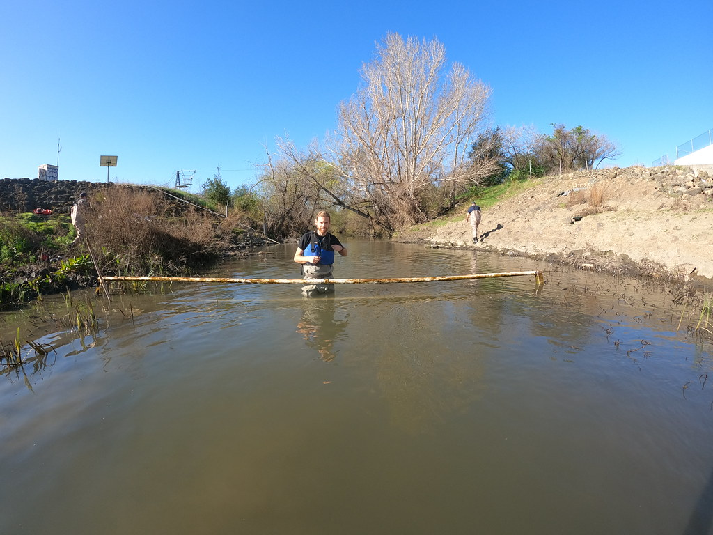 Coyote Creek PIT Tag Antenna