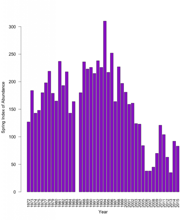 Devils Hole Pupfish Abundance Graph