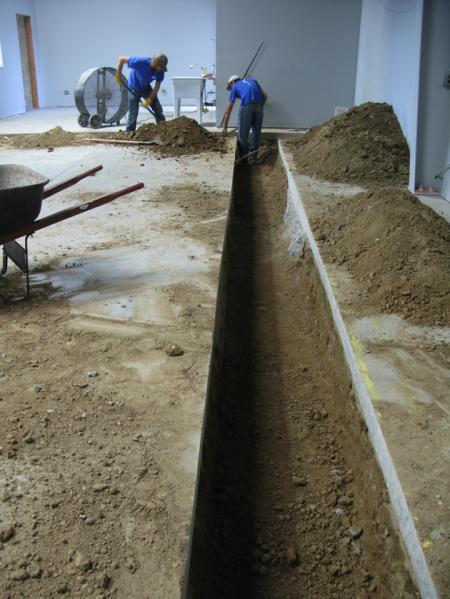Digging fish lab drain