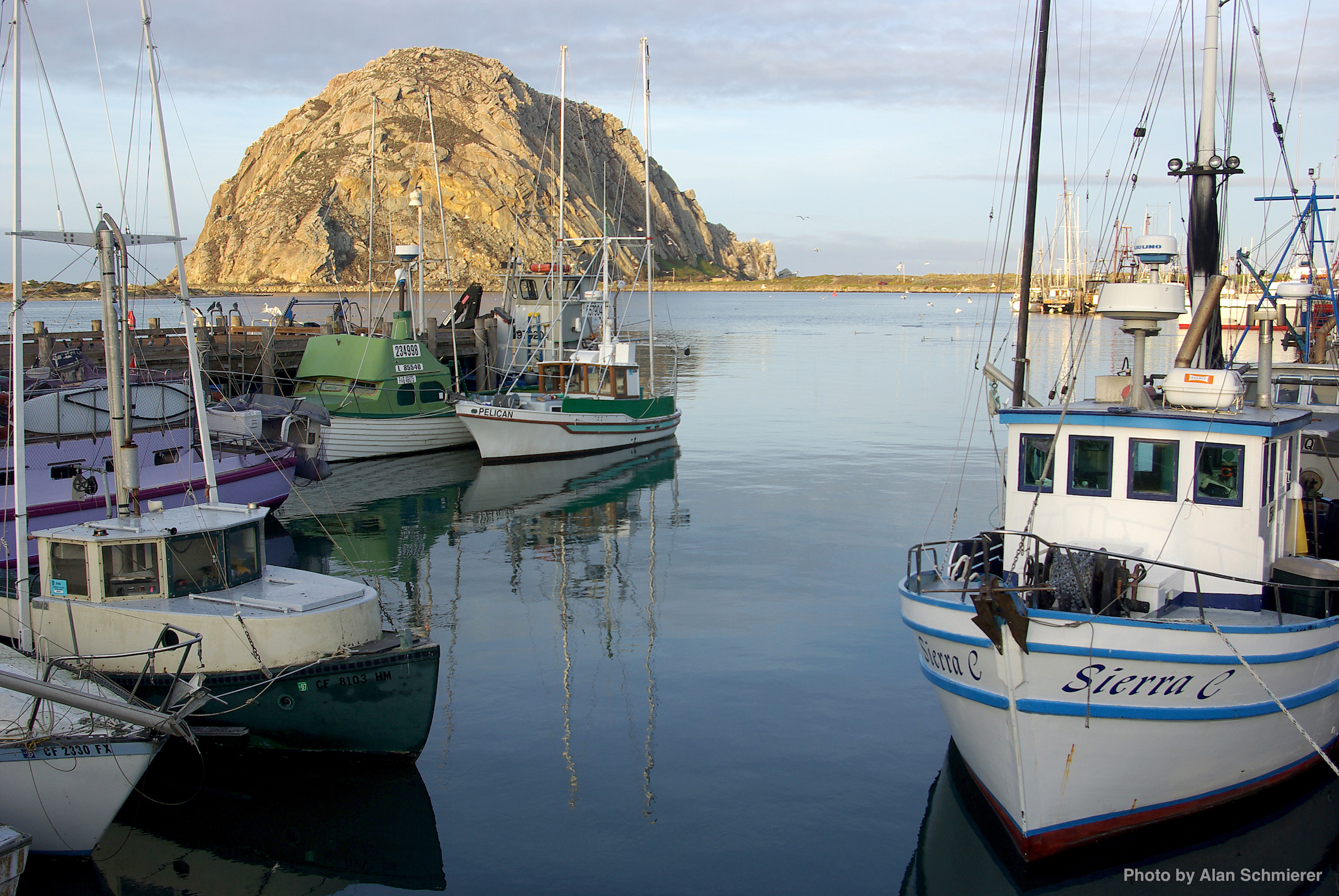EARLY_MORNING_AT_MORRO_BAY_HARBOR_-065_(921959766)