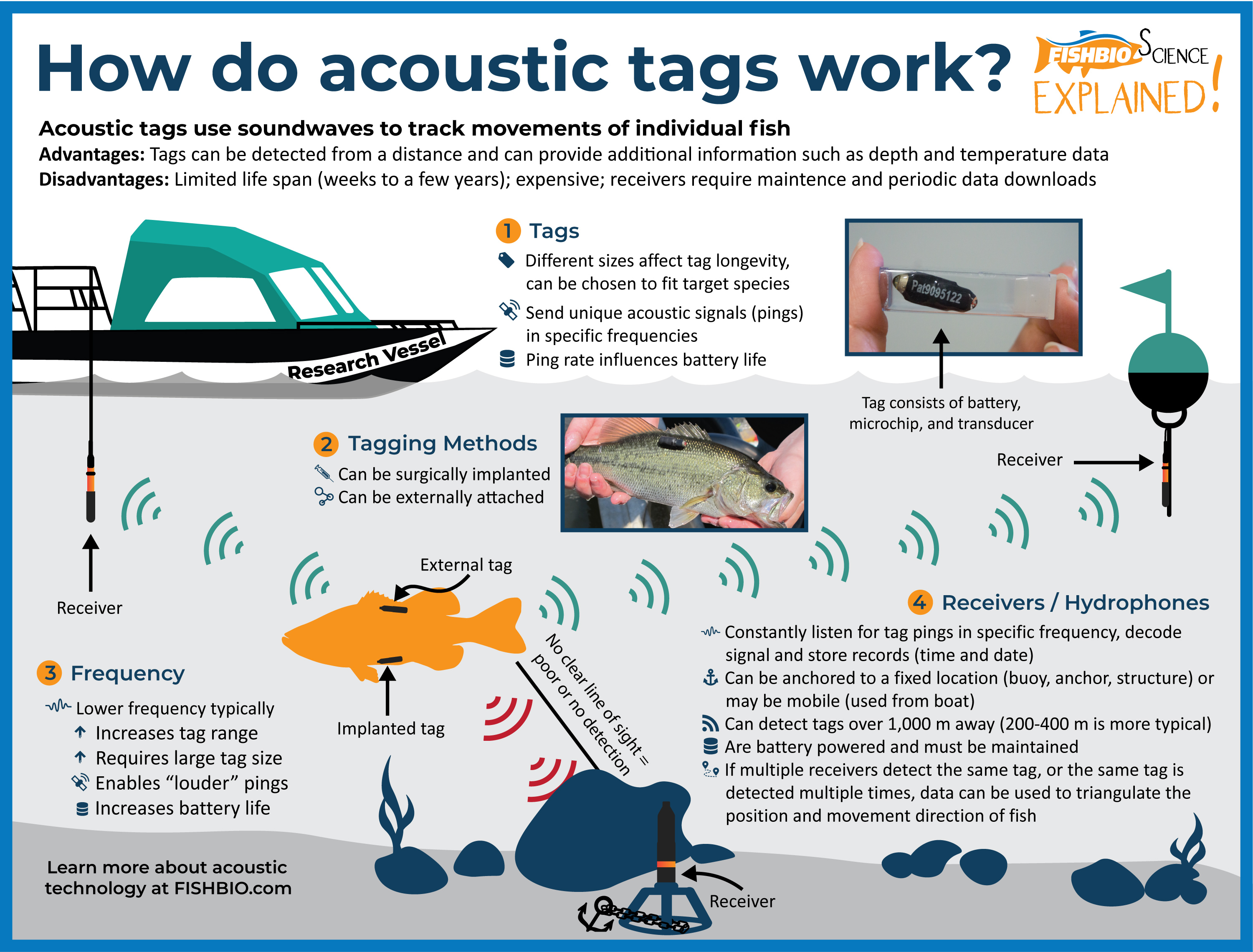 FISHBIO Fish Science Explained_Acoustic Tags and Telemetry