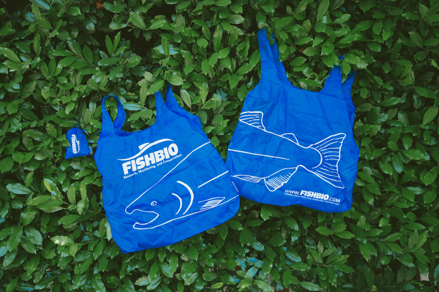 FISHBIO bag salmon design