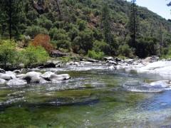 Fish habitat on the Tuolumne River