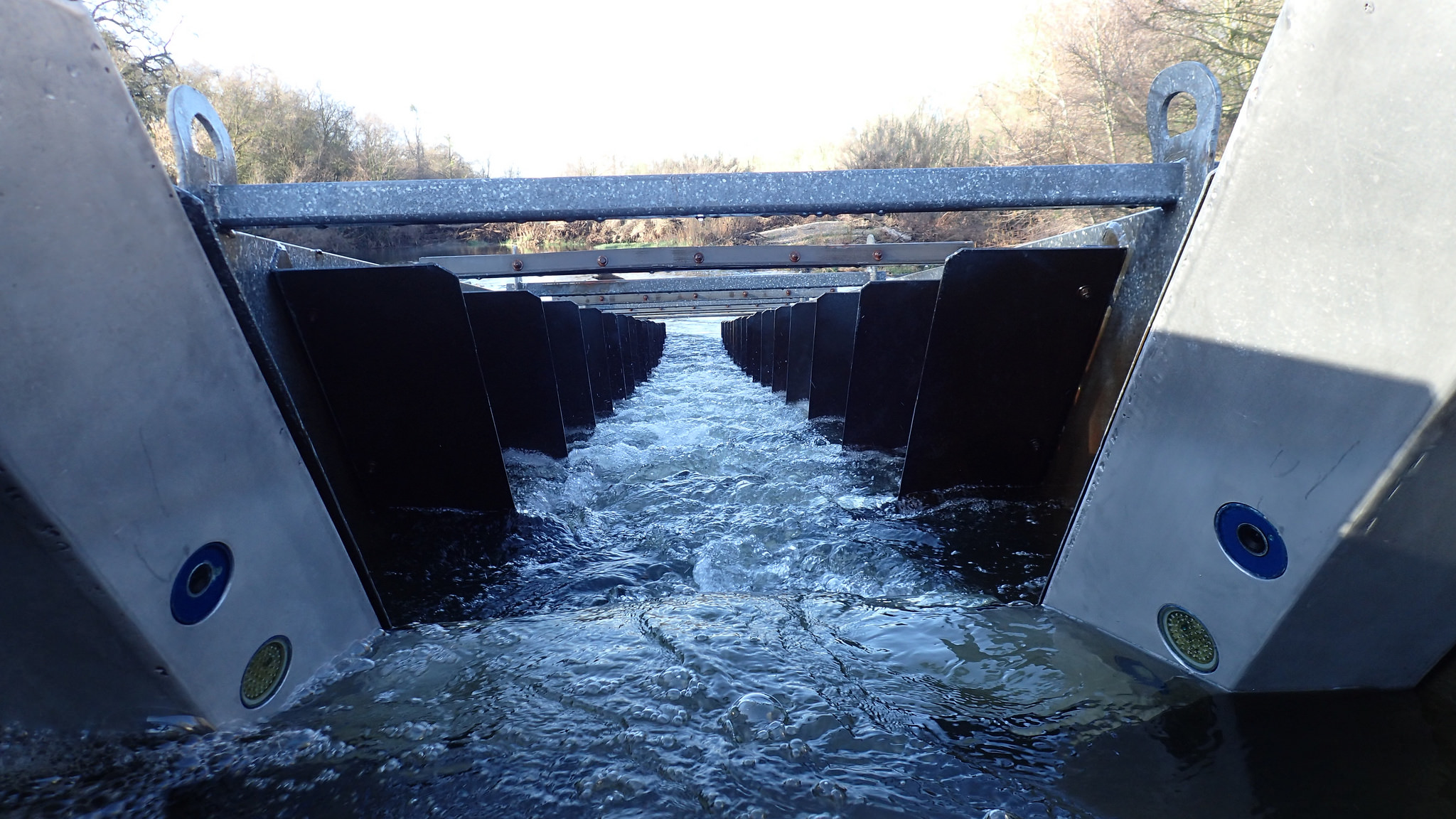 Fish ladder with cameras exposed
