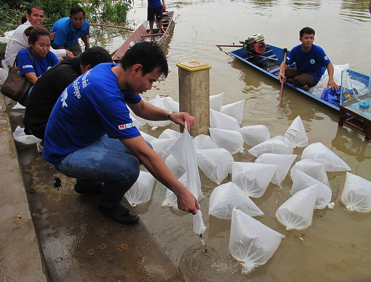 Fish Releasing Day in Lao PDR