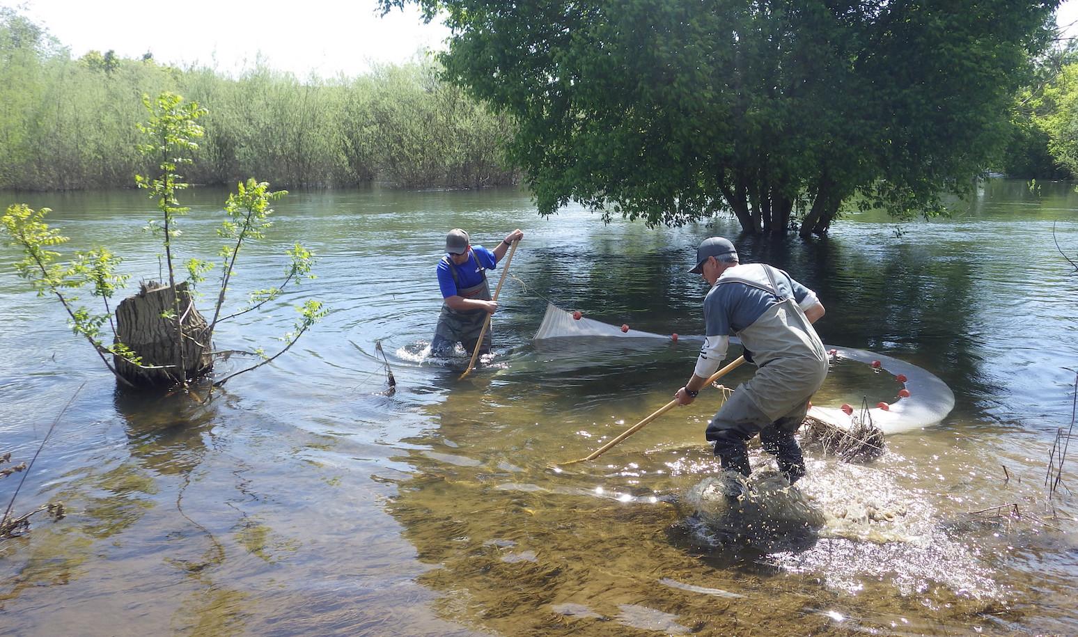 Floodplain sampling