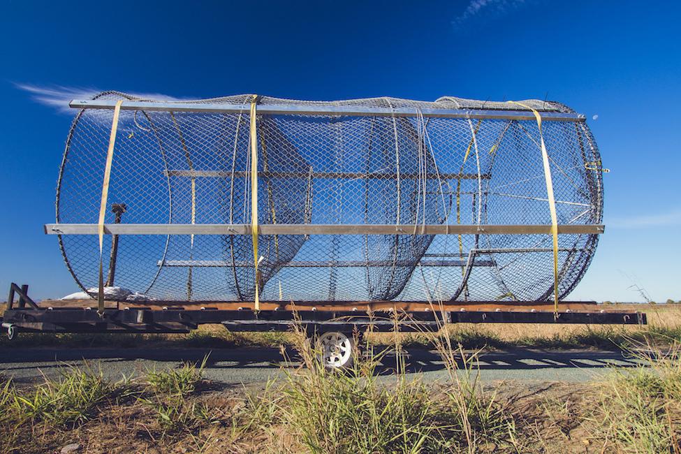wire fyke trap