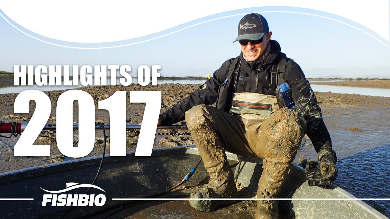 Highlights of 2017 Video