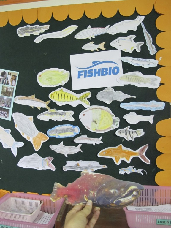 Stan the Salmon visits a school of Mekong River fish in Laos