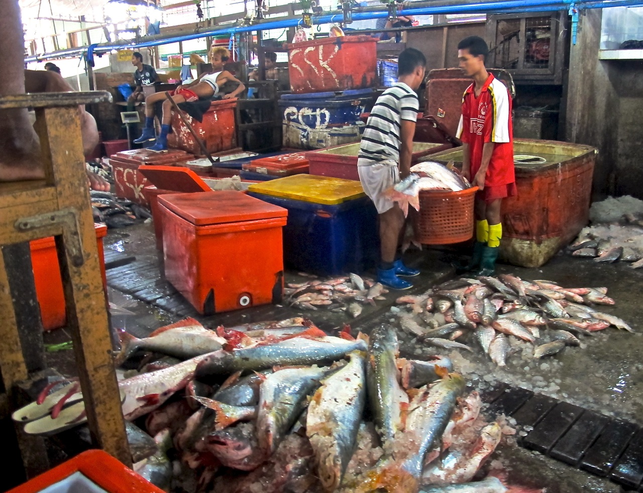 Seafood processing in Myanmar