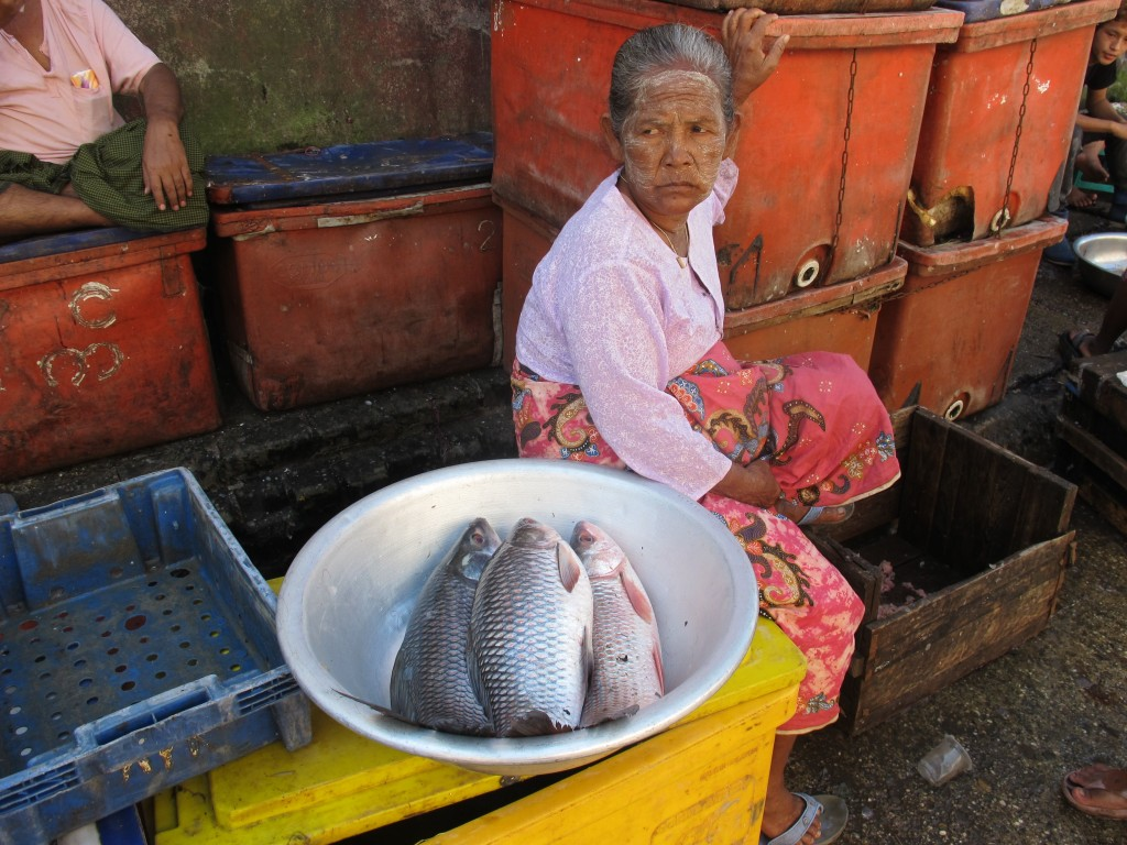 Myanmar woman with fish