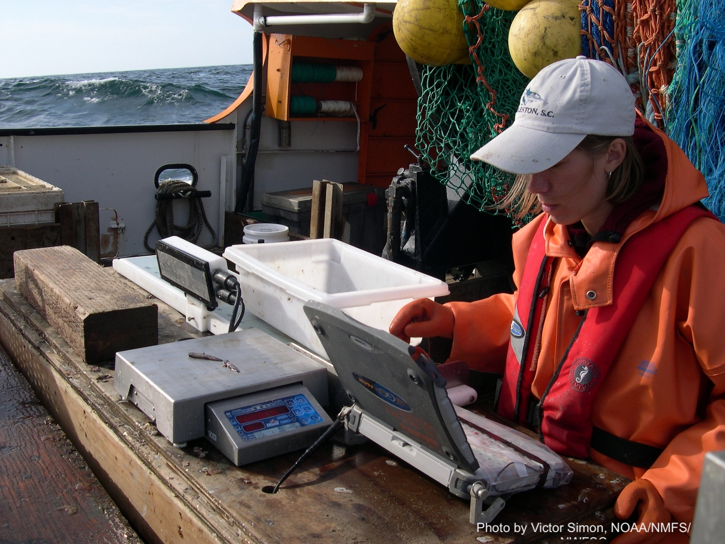 NOAA Fisheries Survey