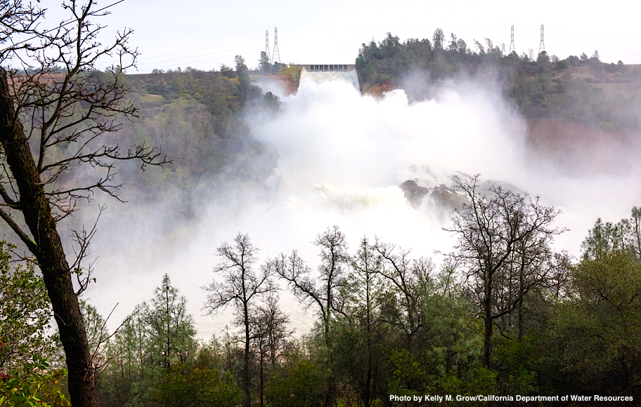 Fish and Money: Consequences of the Oroville Dam Emergency