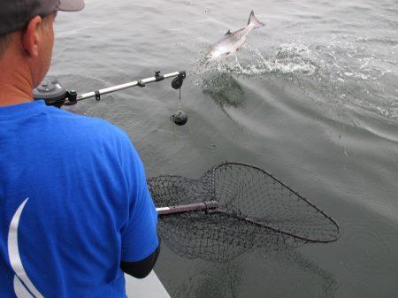 Reeling in the catch