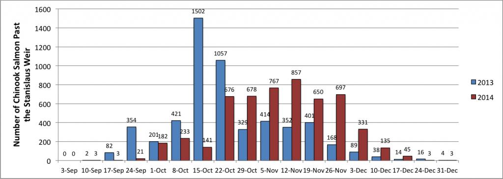 Salmon graph 12-31