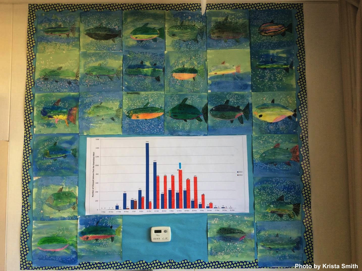Salmon graph in the classroom