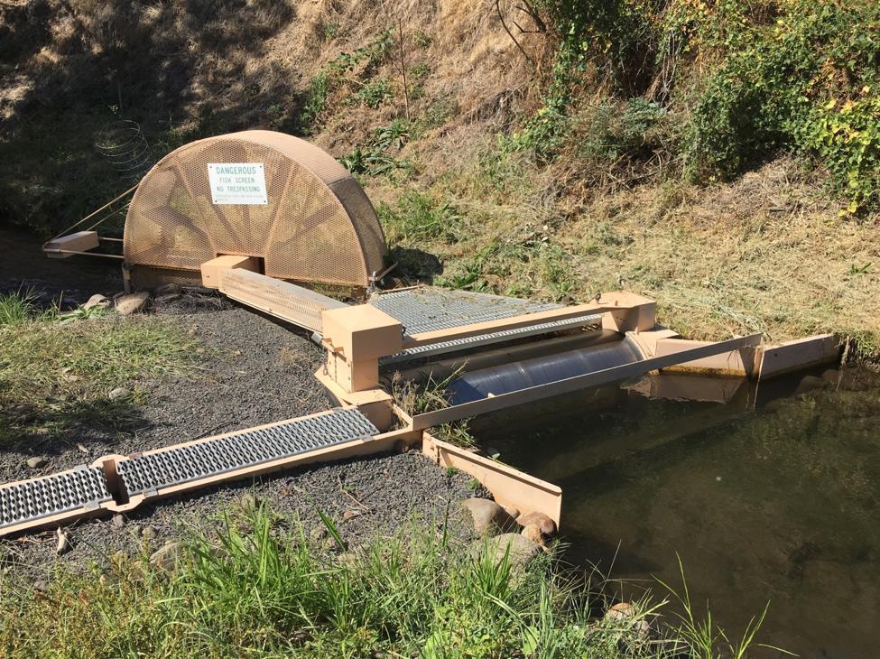 Spinning Fish Screen in Washigton State
