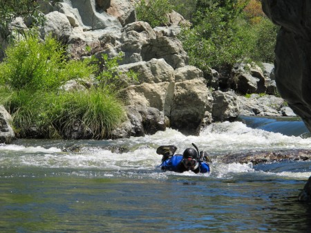 Stanislaus River snorkel survey