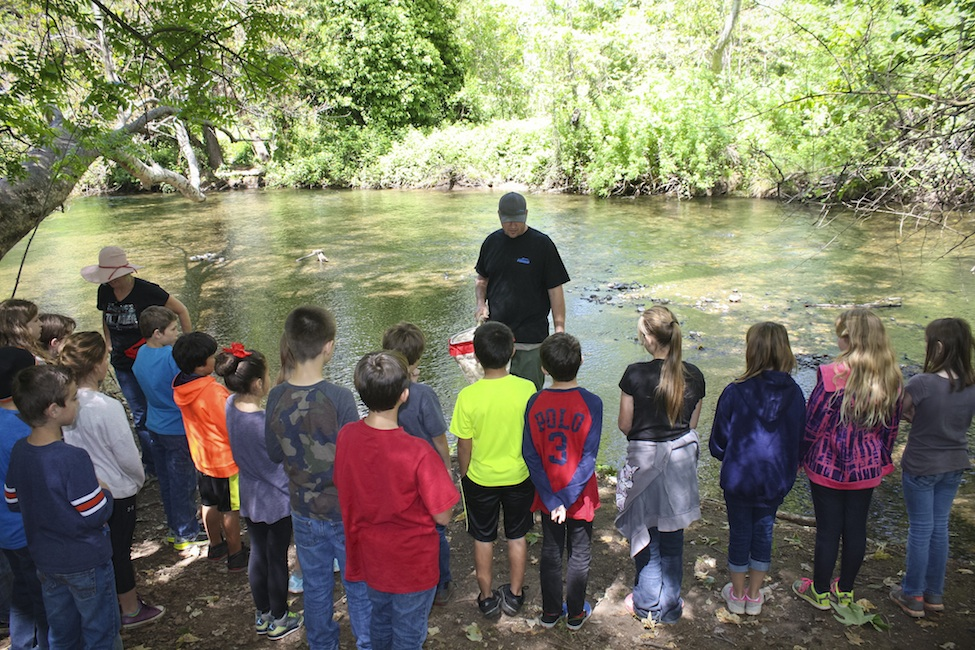 Streamside education
