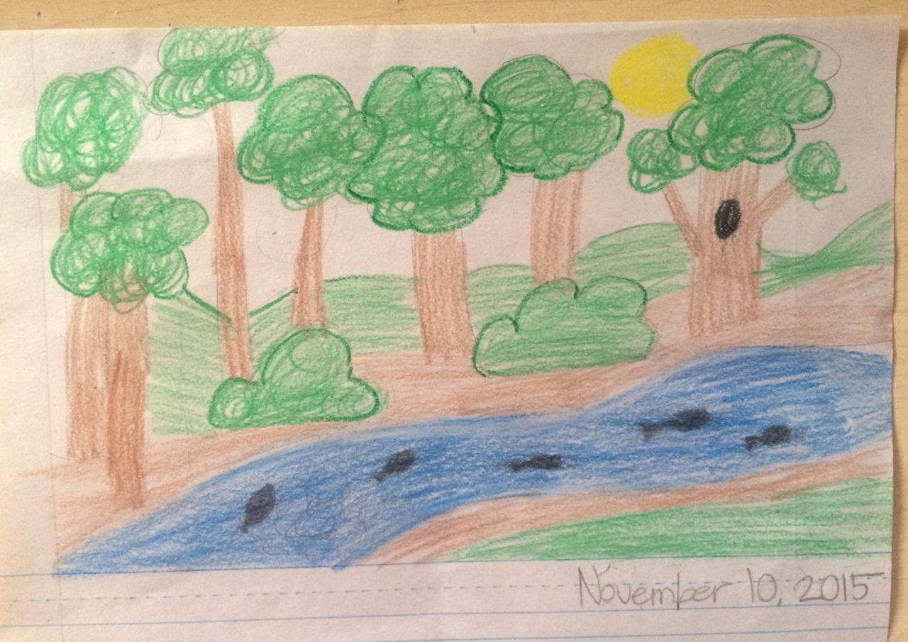 Student drawing salmon migration