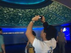 Taking Pictures at the Monterey Bay Aquarium