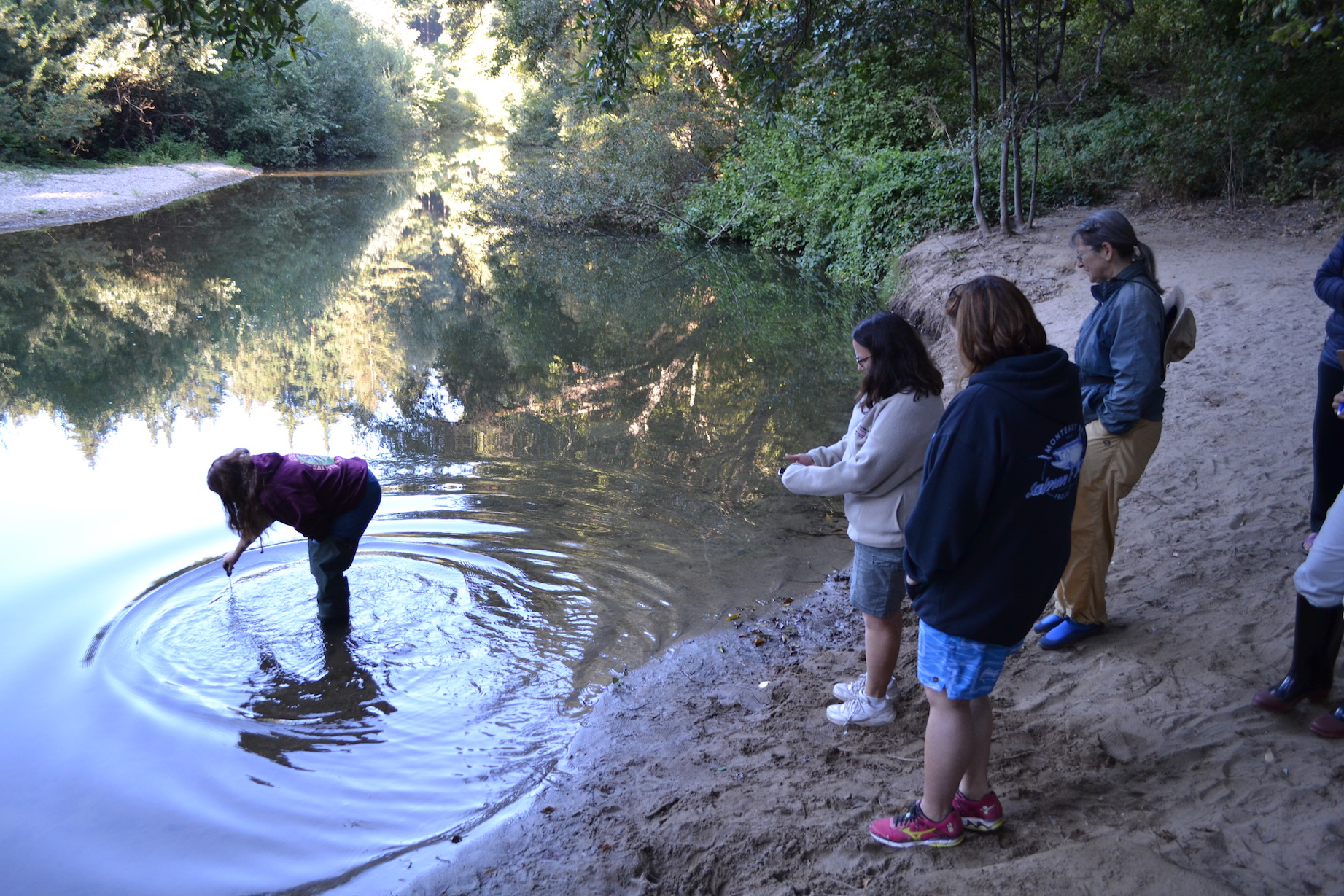 Teachers monitoring water quality STEP training