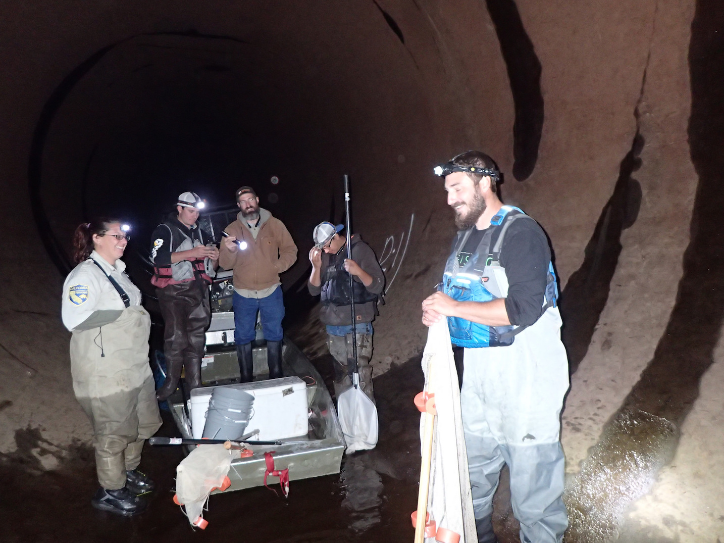 Team working on a tunnel fish rescue