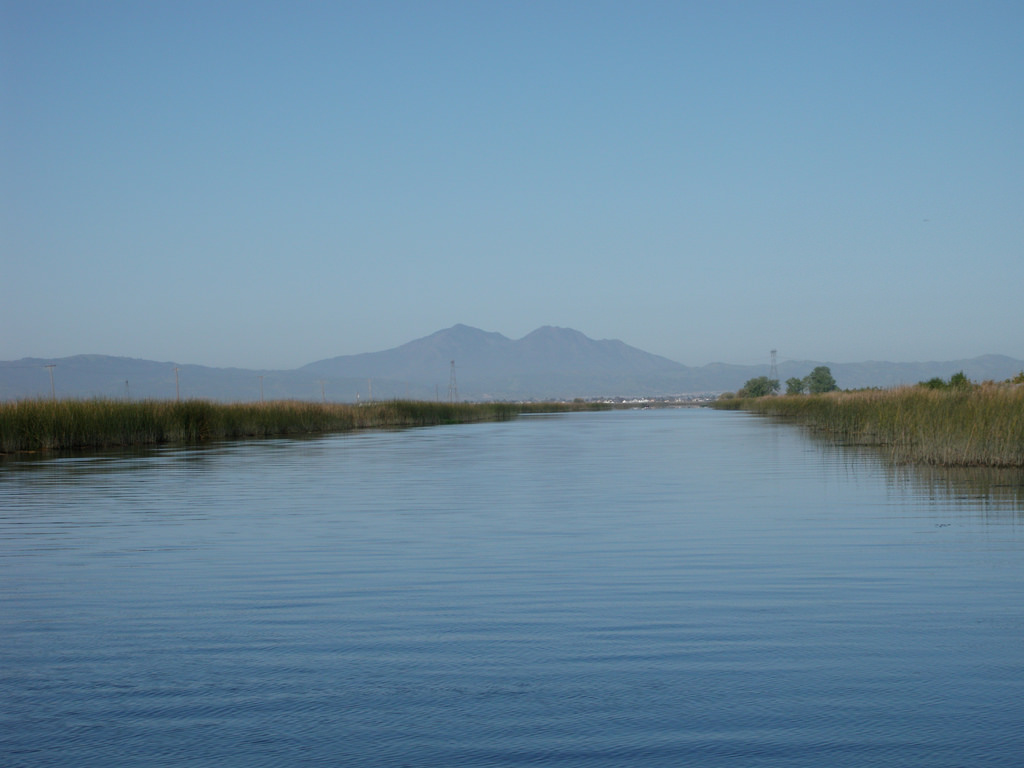 The Sacramento San Joaquin River Delta