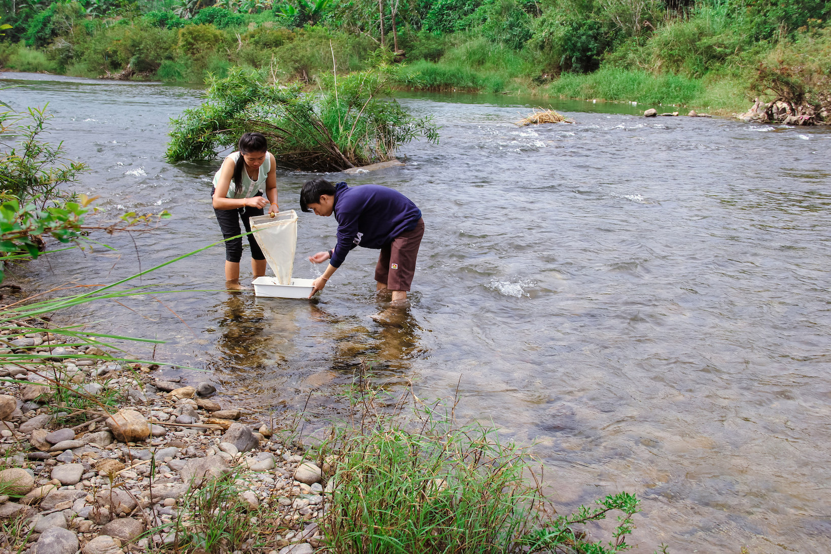 Volunteers collecting macroinvertebrates in Laos