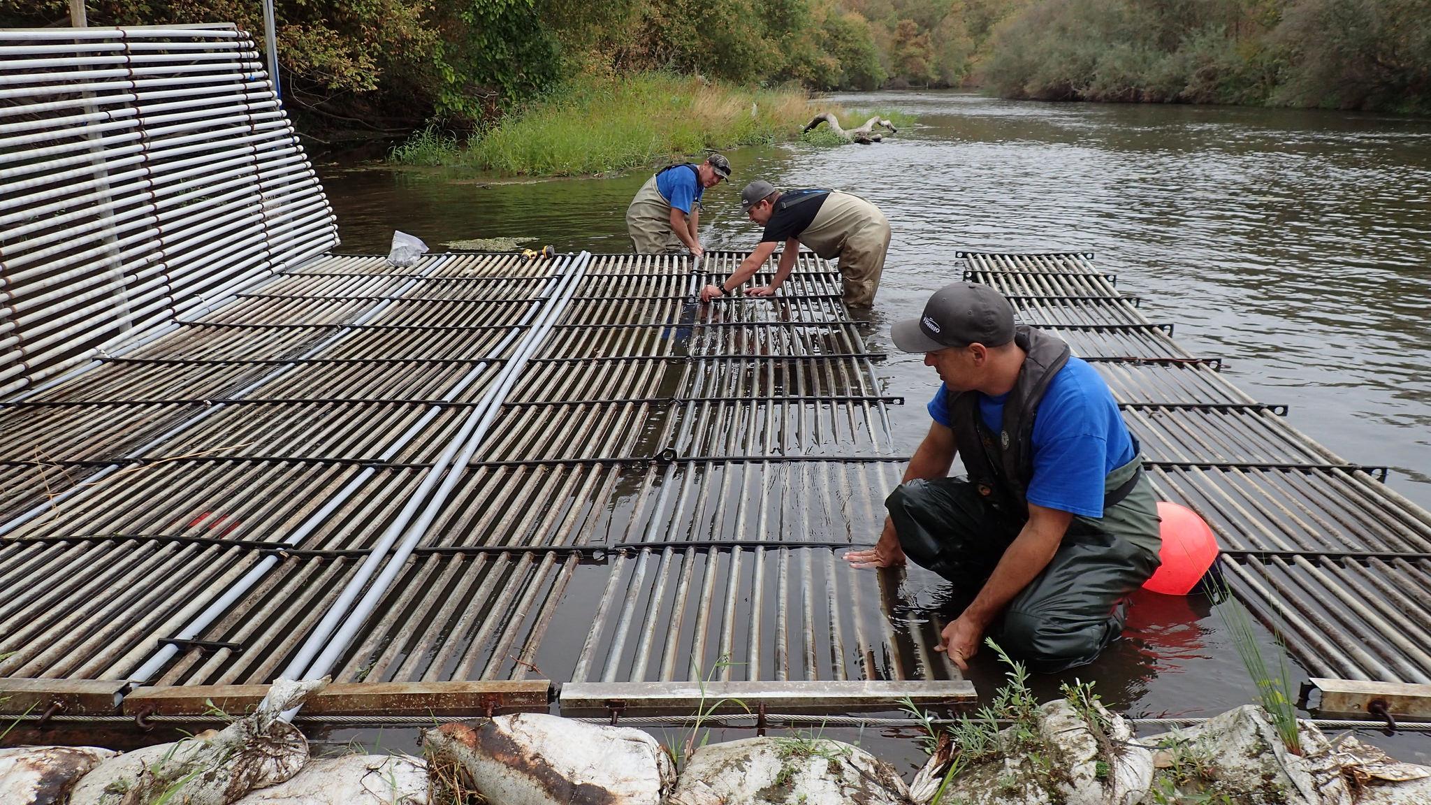 Weir Install