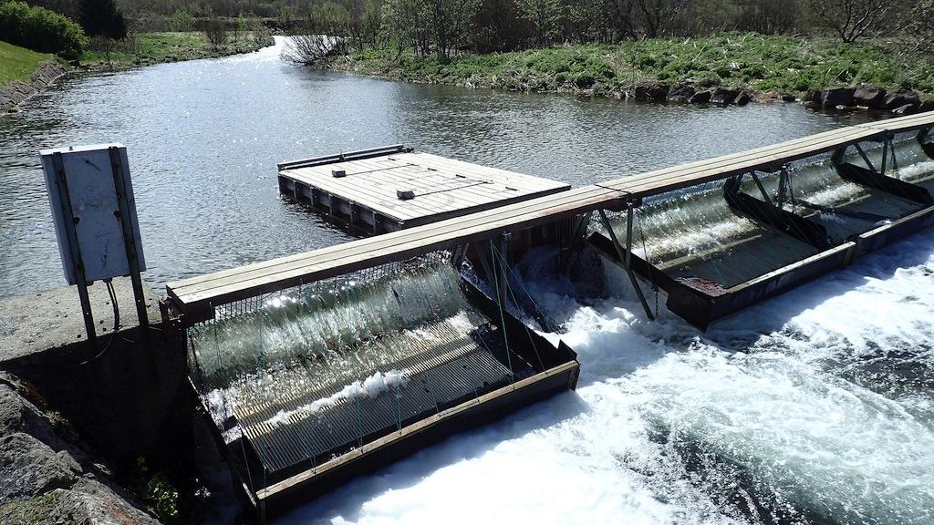 Weir in Iceland