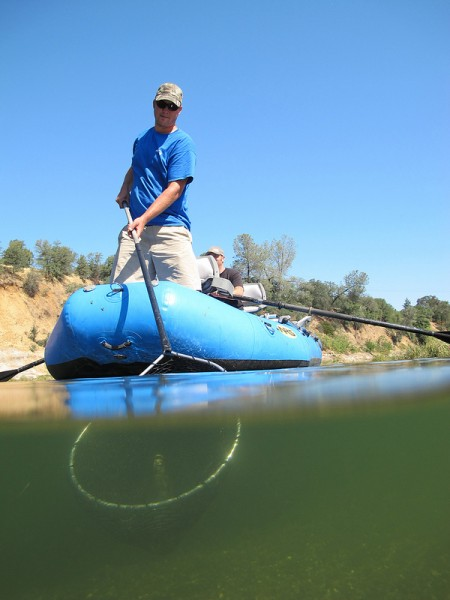 Netting garbage on the Feather River