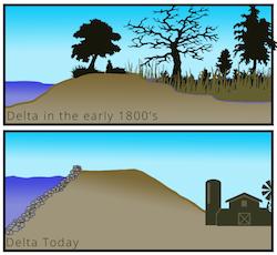 delta-levee