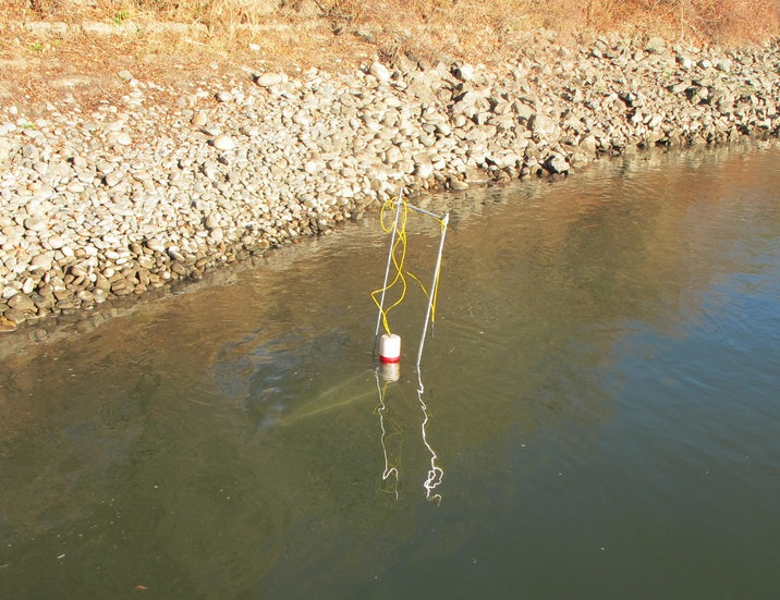 Invertebrate trap for salmon diet study