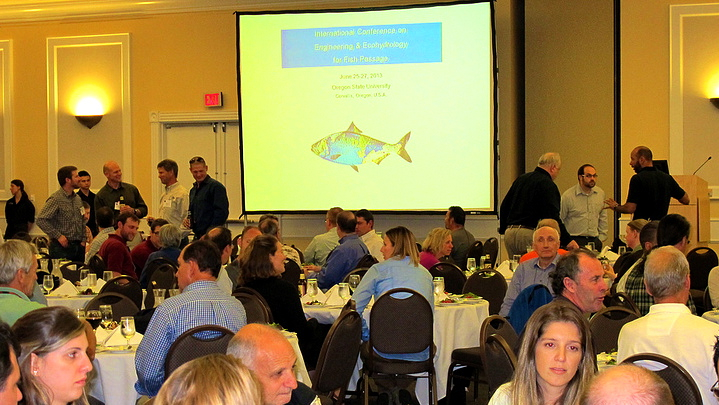 International Fish Passage conference